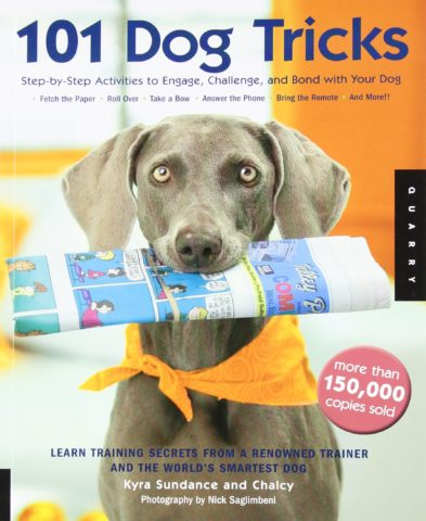 101-dog-tricks-book-by-kyra-sundance