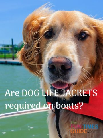 Are dog life jacks and do life vests required when boating with a puppy?
