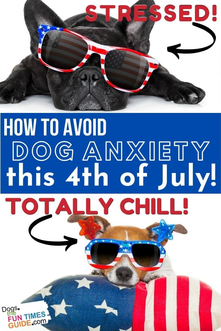 Dogs And Fireworks: Important 4th Of July Tips For Dog Owners (Dog Ear Plugs For Fireworks, Dog Aromatherapy & More!)