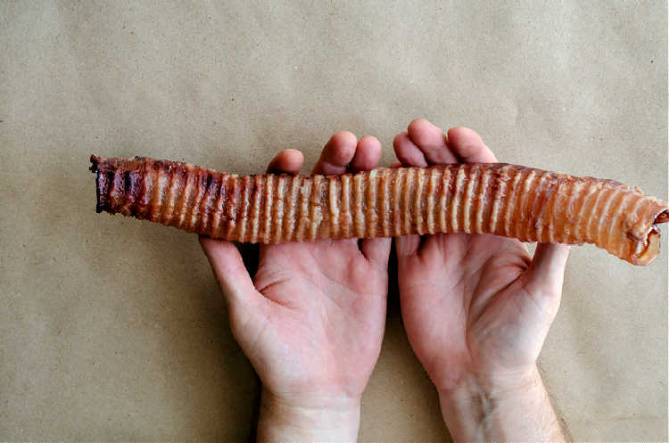 This is a king size dog trachea chew. It is the windpipe of a cow.