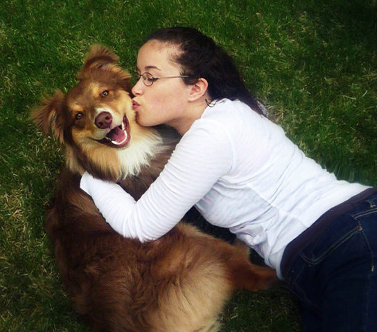 Best Dog Flea And Tick Control The Safest Ingredients To