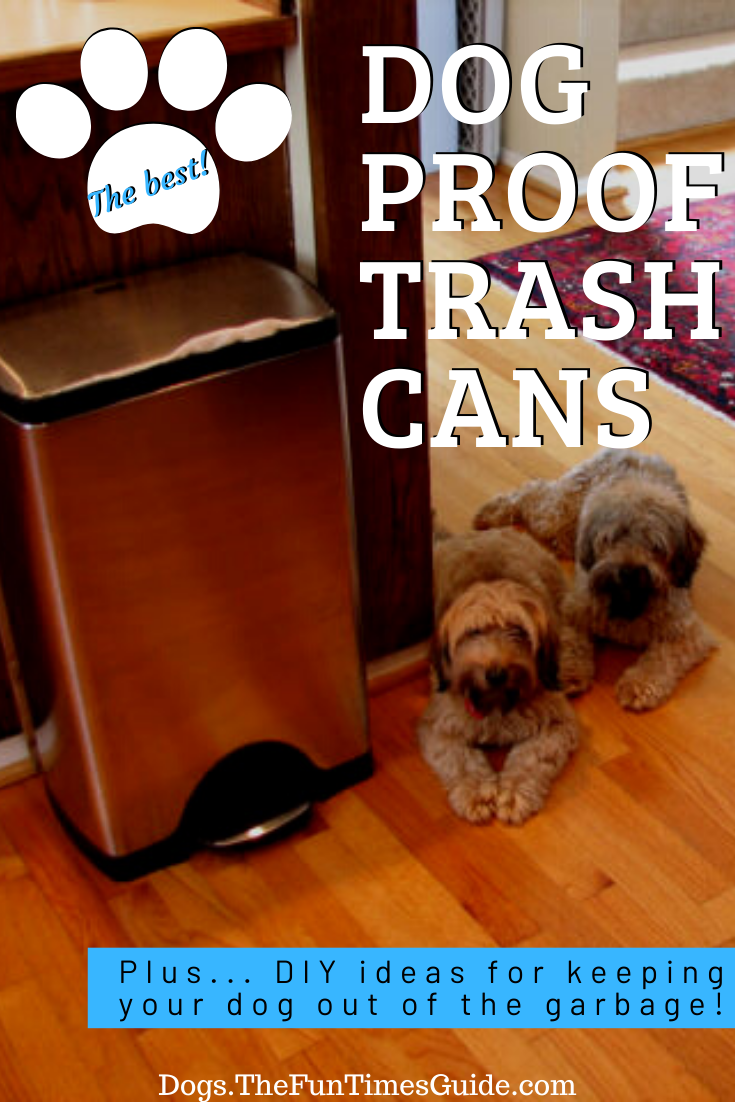 Best Dog Proof Trash Cans + DIY Ideas For Keeping Your Dog Out Of The Garbage