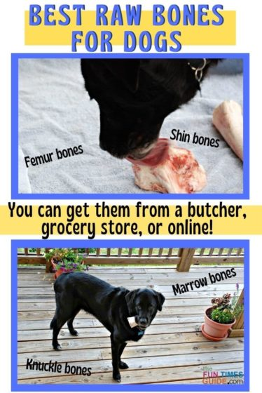 A list of all the best raw bones for dogs that you can buy at a butcher shop, grocery store, or online.