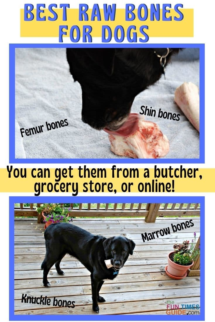 The Best Bones For Dogs: A List Of Butcher Bones Safe For Dogs  + What You Need To Know Before Giving Raw Bones To Your Dog!