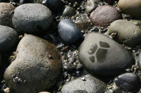birch-bay-beach-river-stones-by-genevievepan.jpg