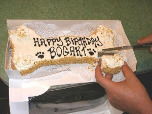 birthday-cake-for-dogs-by-Bogart-Handsome-Devil.jpg