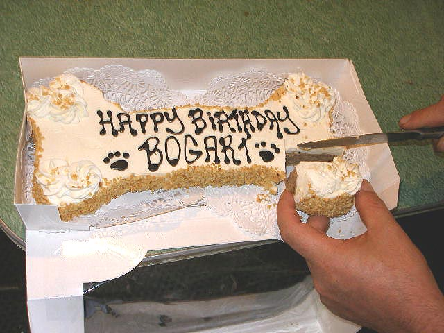 Fun Dog Birthday Ideas Ice Cream Birthday Cake For Dogs The