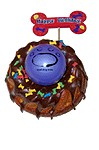 Birthday bundt cake with rubber ball for dogs.