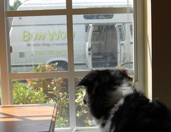 bow-wow-mobile-pet-van-by-jilbean3.jpg