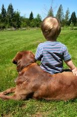 boy-and-his-dog-by-btwist.jpg