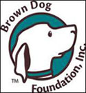 Brown Dog Foundation + Organizations That Help Dog Owners Pay Expensive Vet Bills