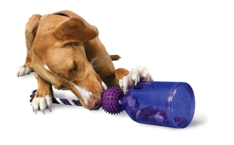 Dog Toys For Serious Chewers