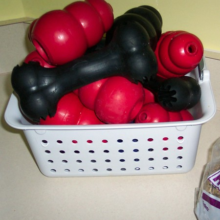 Can I Put A Kong Dog Toy In The Dish