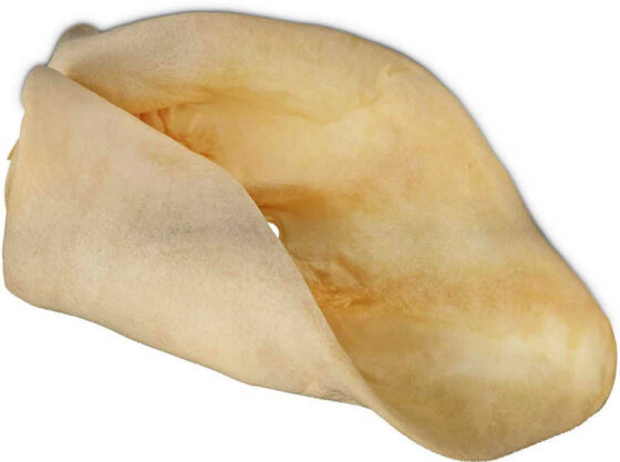 This is a cow ear dog chew. Notice how it is very light in color -- almost white? That's because it is disinfected before being baked and dried in an oven.