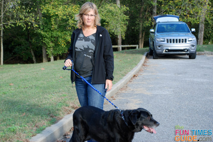 Using the Cujo leash for dogs with my large dog.