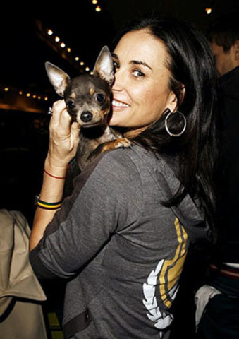 Photo of Demi Moore & her Dog