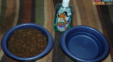 Dog Bad Breath Remedy: Doggie Mouthwash (A Drinking Water Additive) Worked For Us!