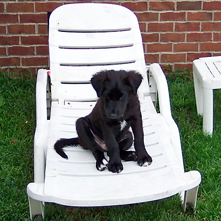 Destin sitting in the lounge chair out back.