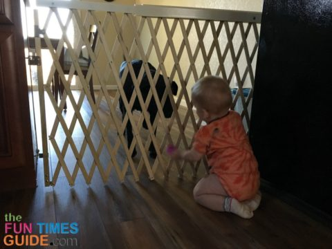 This is the pet gate / baby gate separating the dog mudroom area from the rest of the house.