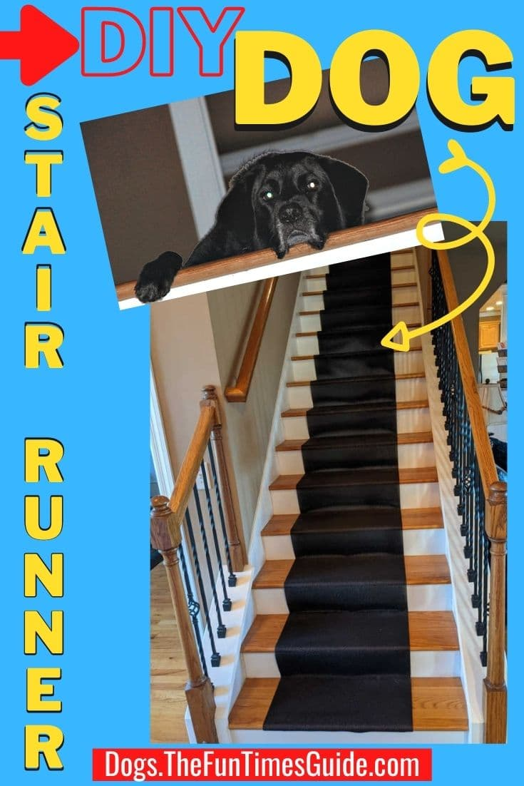 Is Your Dog Refusing To Go Down Stairs? My Solution: A Cheap DIY Stair Runner For Dogs