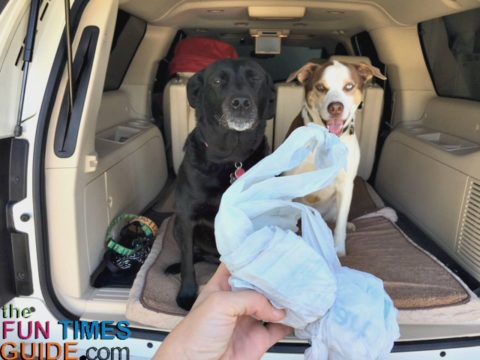 See all of the ways that we use plastic bags when traveling with dogs in the car.