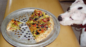 2 Lists: Human Foods That Are Safe For Dogs & People Foods That Are Not Safe For Dogs