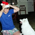 Our dog intrigued with the Santa hat Lynnette's brother is wearing.
