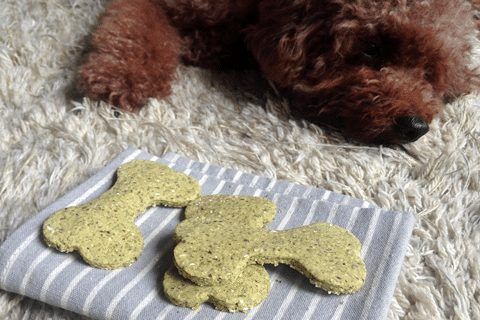 dog-breath-fresheners-treats