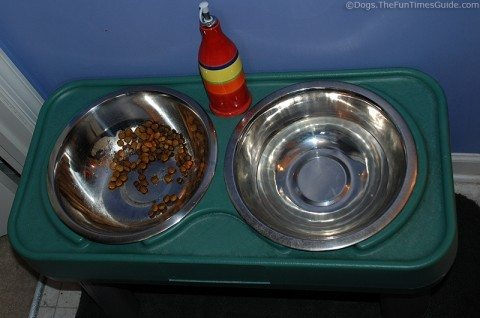 My dog's food and water bowls, plus a bottle of extra virgin Olive Oil that I pour on his food each time.