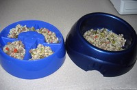 dog-food-bowls-with-same-amount-of-food.jpg