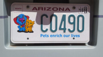 States With Pet-Friendly License Plates