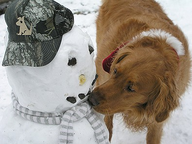dog-kissing-snowman.jpg