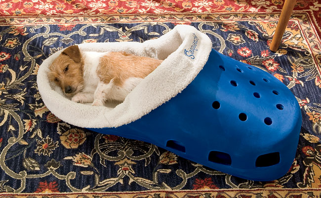 Before You Buy A New Dog Bed Some Luxury Dog Beds Worth