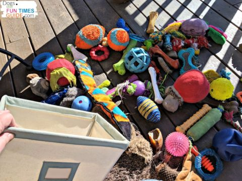 This is one of the dog toy bins that I use to pick which dog toys I'm going to rotate next.
