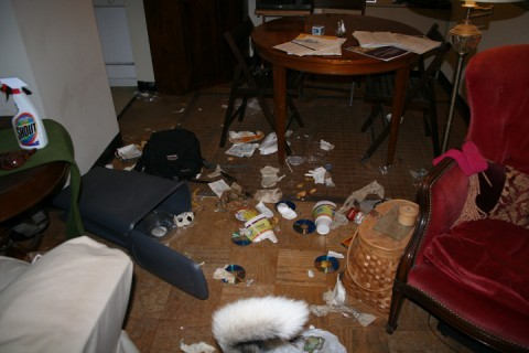 Dog trash all over the house!