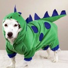 dogzilla-dog-costume.jpg