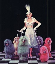 doris-day-colorful-dogs.jpg