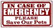 In Case Of Emergency: Pet Sitter & Vet Tips