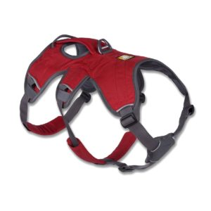 Example of an escape-proof dog harness with extra support and grips for you to assist your dog, if necessary.