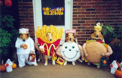 fast-food-dog-halloween-costumes.jpg