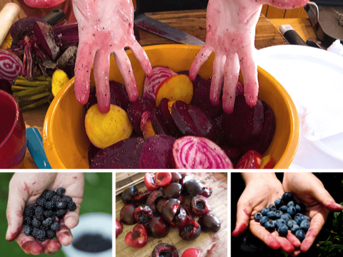 Some of the foods that stain your hands (top, then left to right): beets, blackberries, cherries, and blueberries.