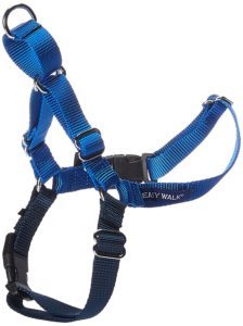 Example of a front cinch harness for dogs. Similar to a Martingale collar, it has an extra loop that cinches tighter if your dog starts to pull.
