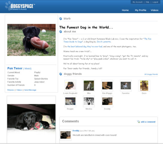 online dating sites for dog owners I hate dogs there i said it why do dog owners think that boorish behavior we would never tolerate from someone's kids is (at one point when i was doing.