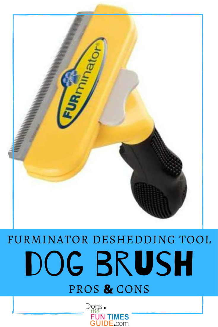 WHAT IS THE BEST DOG BRUSH? A pet brush that works great on ALL dogs (large, small, long hair, short hair) is the Furminator deShedding tool. I\'ve used the Furminator for dogs since 2008. See all the pros & cons in my Furminator dog brush review. The article answers these questions: What is a Furminator brush for dogs? How often should I use a Furminator? Is Furminator safe for puppies? How long should I use the Furminator? Does the Furminator cut the dog\'s hair? #doggrooming #dogbrush #petbrush