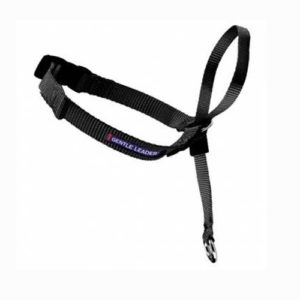 This is a Gentle Leader head halter or head harness collar.