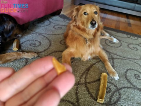There's no need to worry when small pieces like this break off a Himalayan dog chew.