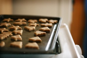 homemade-dog-treats-by-ginnerobot.jpg