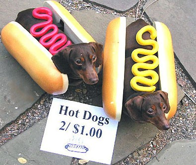 hot-dog-costumes.jpg