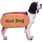 hotdog-dog-costume.jpg