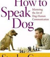 How Dogs Communicate – Learn To Read Your Dog's Body Language